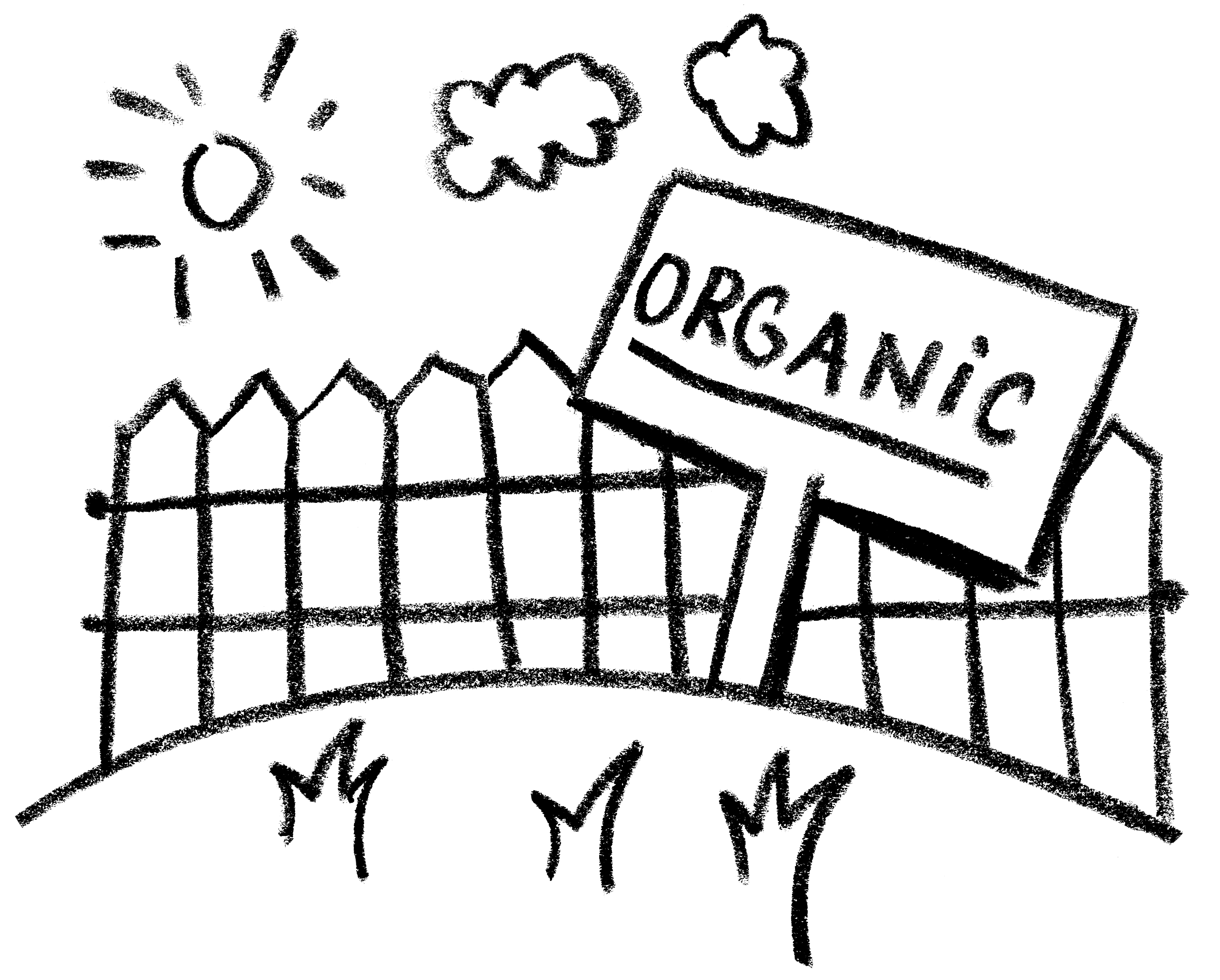 2008 – All our land, from the farms to our gardens – was now certified organic.