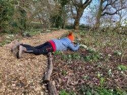 Taking photos of Snowdrops in the Yeo Valley Organic Garden