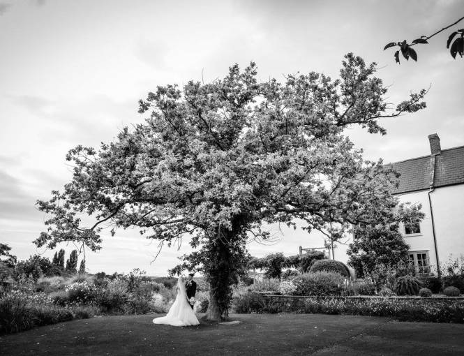 Married couple under a tree in the Yeo Valley Organic Garden