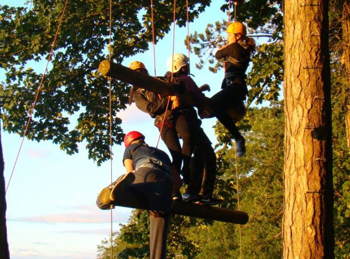 Young Bristol Climb Trees in their activities programme