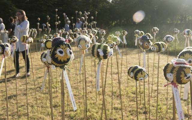 Knitted Bees in the Yeo Valley Organic Garden