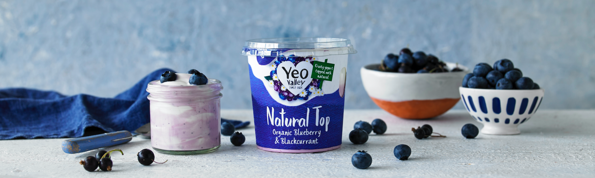 Yeo Valley blueberry yogurt greek style natural top