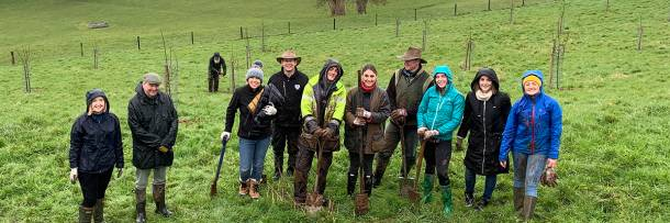 Staff from Yeo Valley planted an organic orchard