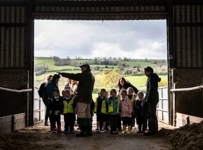Children learning about farming at Yeo Valley